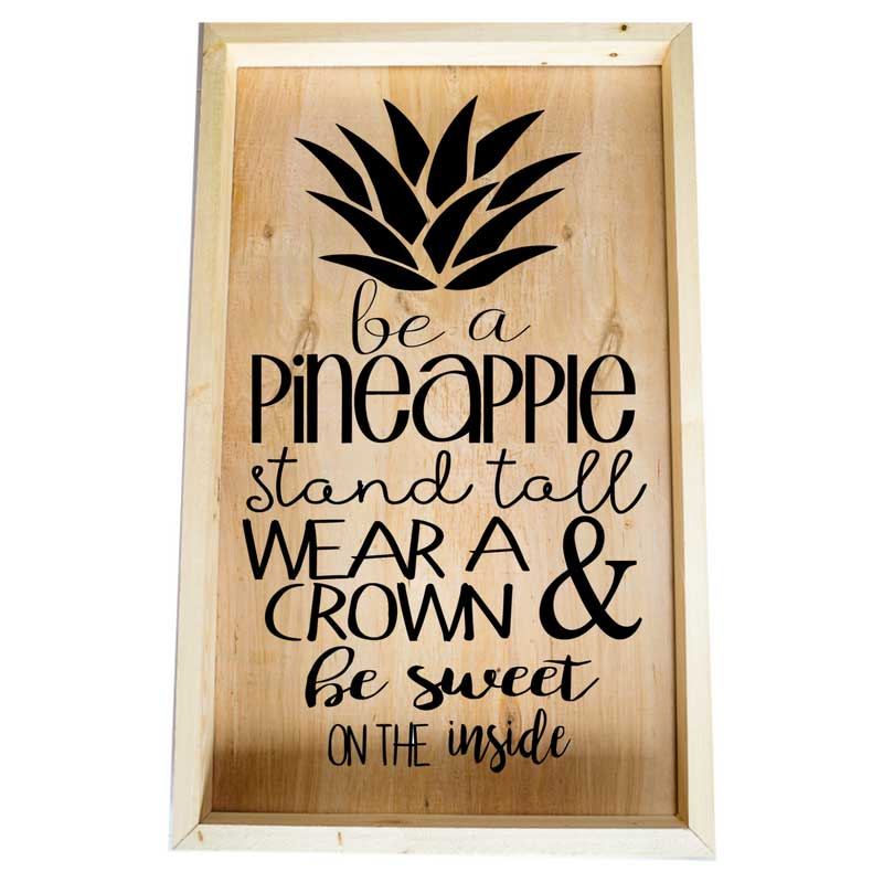 Larger-14x24-Framed-Be-a-Pineapple