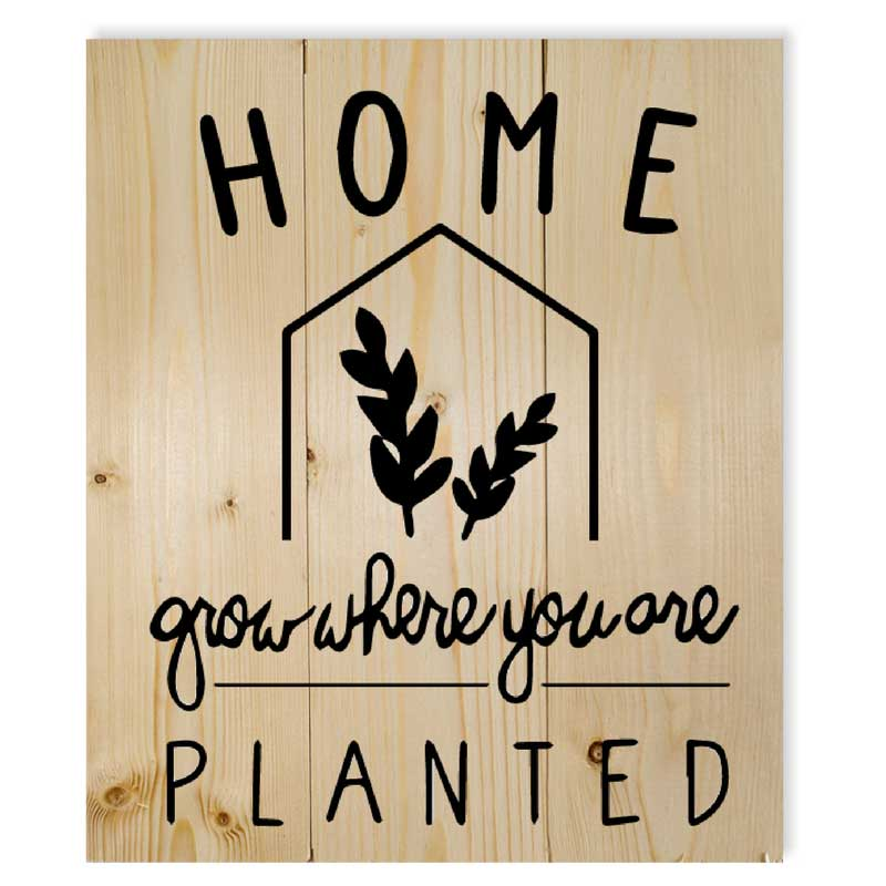 Small-Home-grow-where-you-are-planted